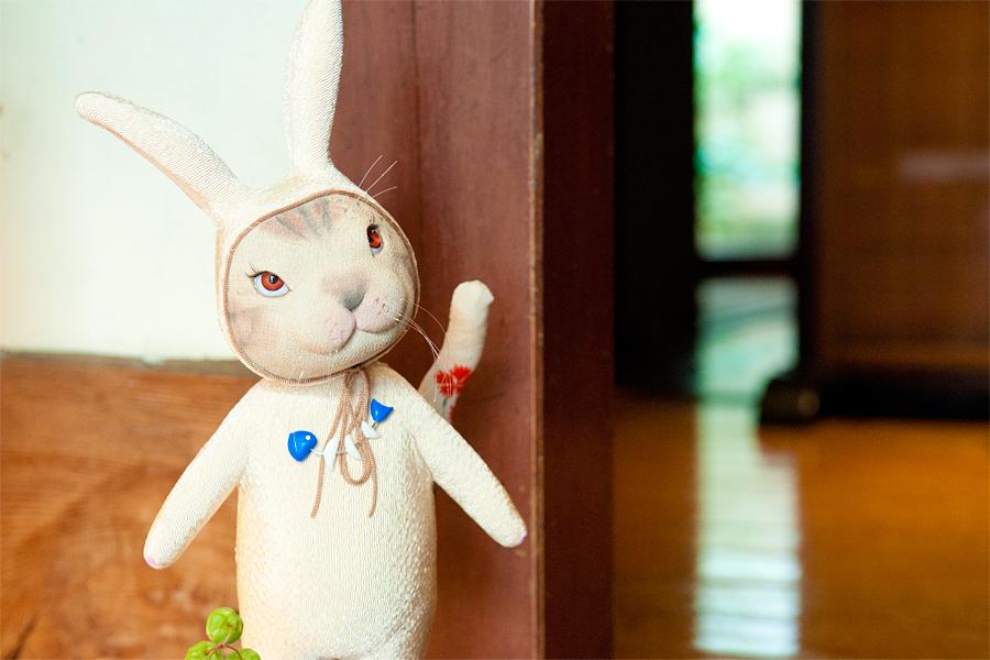 加波千晴|人形作家