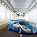 Bugatti Veyron Centenaire by Gaetan | www.carbonphoto.fr