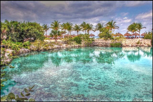 Paradise Island  Geheime Erfolge
