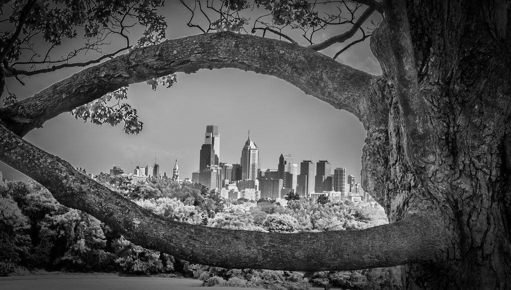Philadelphia Skyline from Belmont Plateau