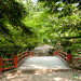 Japanese Bridge in Park on Miyajima Island, Japan