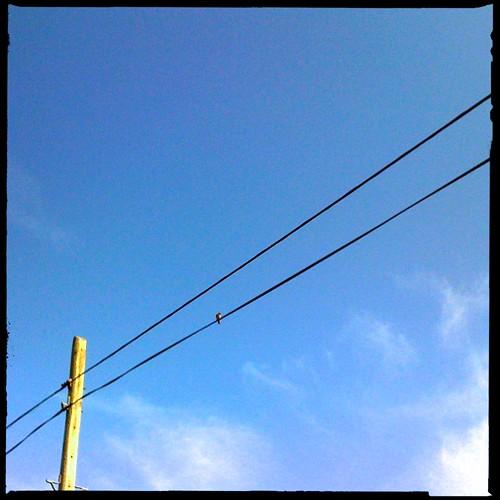 Summer Skies 2012 - Day 44: Green Lane