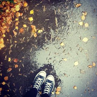 autumn 012