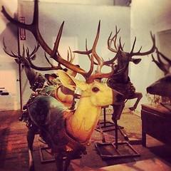 art, antler, deer, reindeer,
