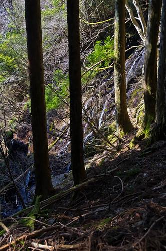 真富士の大滝 2012.3.21-7