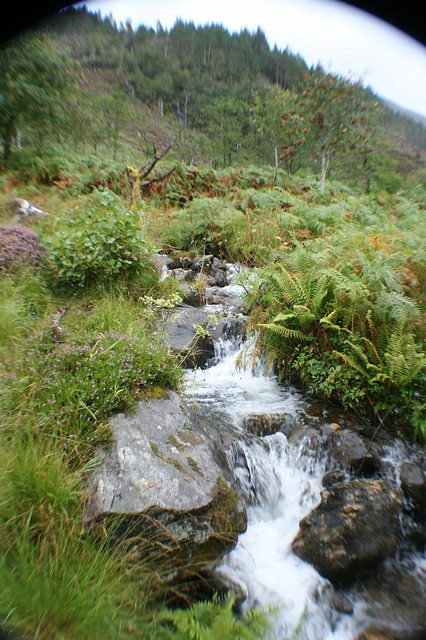 Highland Stream, N.W. Highlands