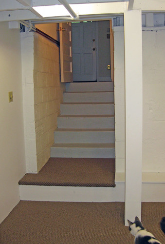 basement stairs carpet