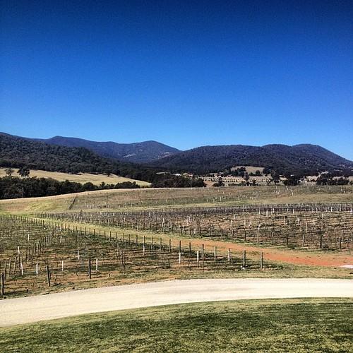 Mudgee wine country.