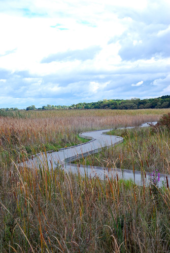 presquile marsh boardwalk