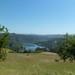 Lake Chabot by dasbat