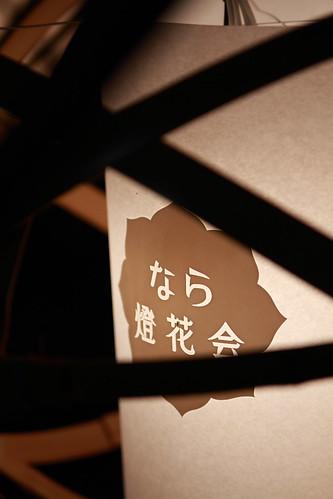 燈花会04