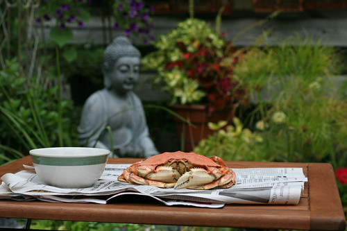 AA Crab on table