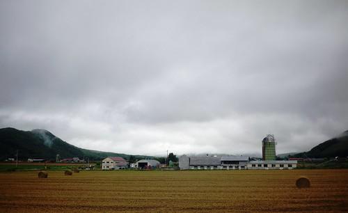 Farmland east of Lake Oketo (Hokkaido, Japan)