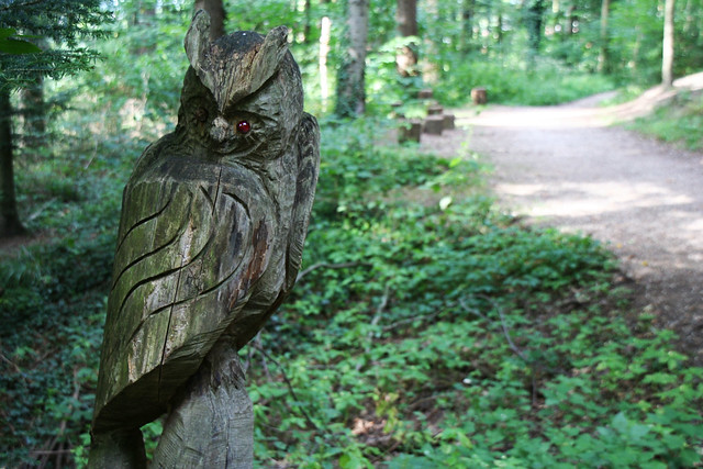 Wooden owl, Black Forest, Germany
