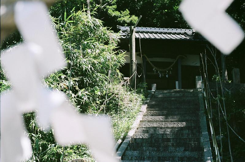 道路横の神社