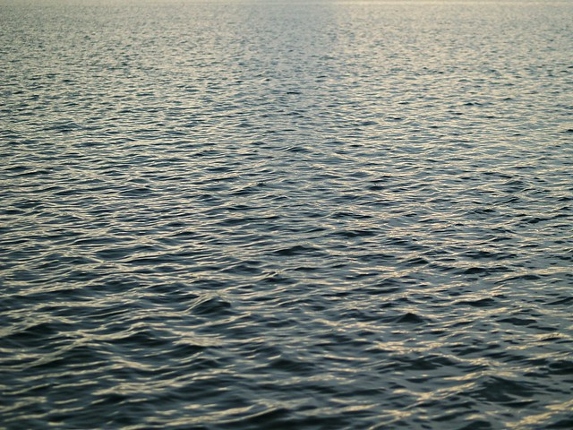 i love the water in the early evening