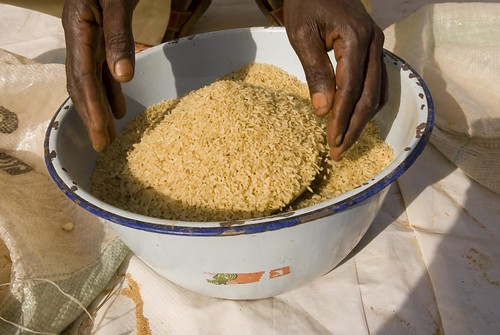 Rice grains in bowl. Nigeria. Photo: Arne Hoel / World Bank