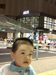 夕方散歩とらちゃん (2012/8/22)