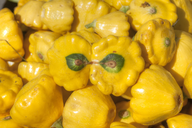 Cooking with Pattypan Squash - Sweet and Savoring [photo by Andy Milford]