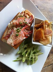 Lobster Roll - Grey Lady