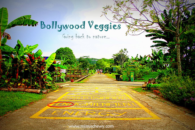 Bollywood Veggies 082