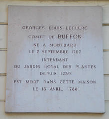 Photo of Georges Louis Leclerc white plaque