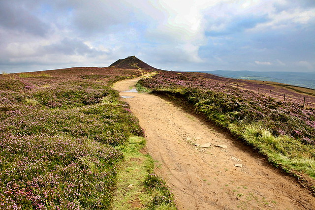 The track leading to win hill in the peak district with more purple moorland