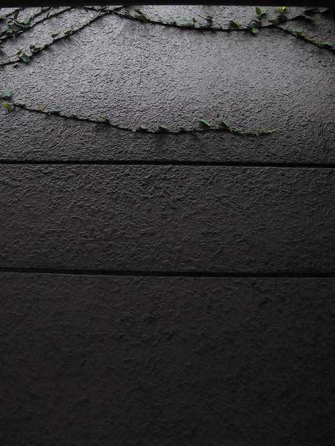 crawling vines on concrete wall ortigas01 061712