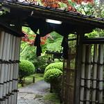 龍安寺 (Ryoanji Temple)
