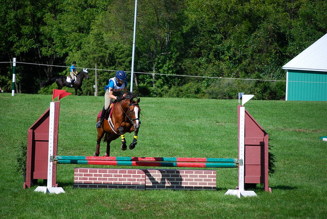 Bucks County Horse Properties For Sale