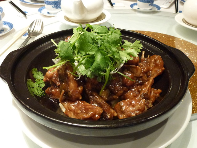 Ling Cod 4
