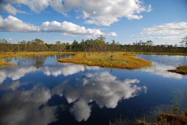 Viru Raba - Parco Nazionale di Lahemaa, Estonia