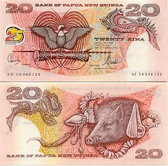 papua-new-guinea-money