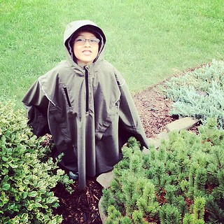 I have a new garden gnome. #cleverhood