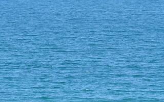 Blue Sea (AP4M0834 1PS)