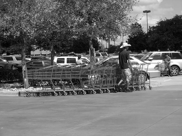 Cart Wrangler / Dallas, Texas / August, 2016