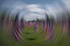 "Week 36 Theme: ""Nothing in Focus"" Emotions in motion 9/11 15th anniversary"