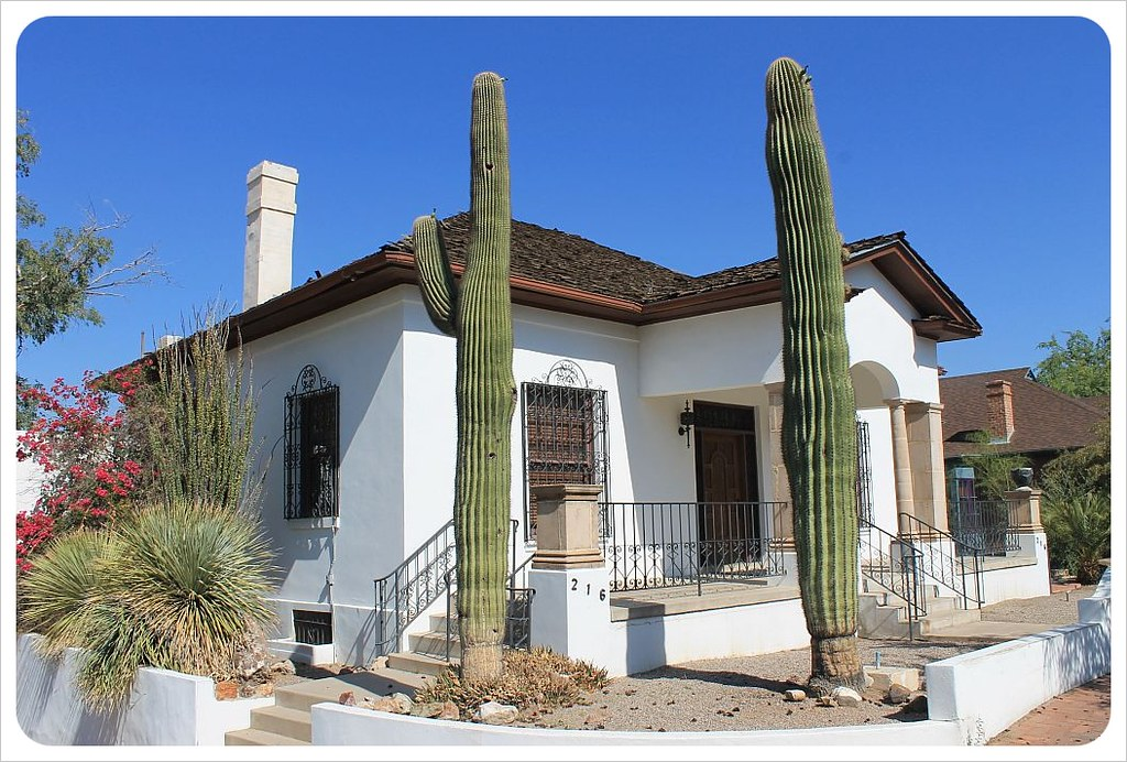 tucson house with saguaros