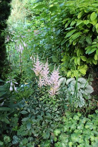Le jardin de Laurent - Page 2 7752054550_712ff13577