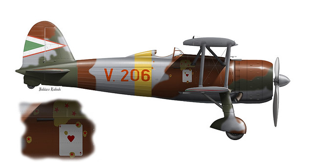 Fiat CR.42, Hungarian Air Force