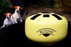 'camper van' yellow A flat major Bütone 1
