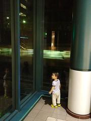 電車を見るとらちゃん (2012/8/10)