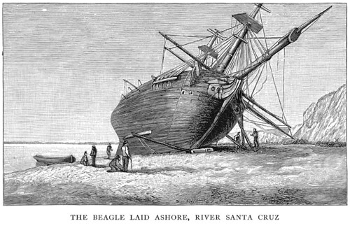 The Beagle Laid Ashore, River Santa Cruz