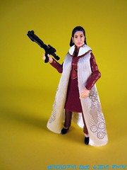 Princess Leia (Bespin Gown)