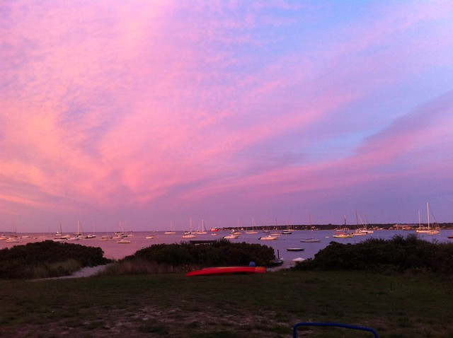 Veeyard Meaning: Vineyard Haven Definition/meaning