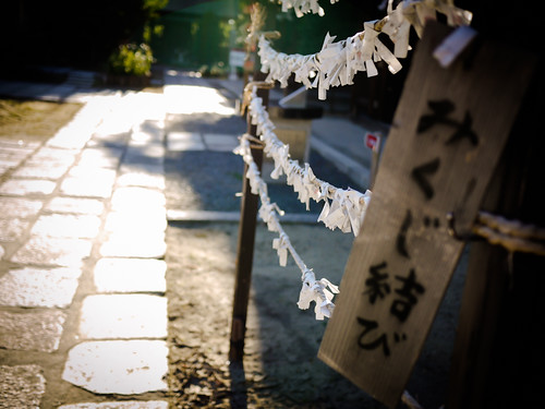 Tying Omikuji at Ikukunitama Shrine by hyossie