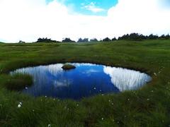 [フリー画像素材] 自然風景, 草原・草, 河川・湖 ID:201208271200