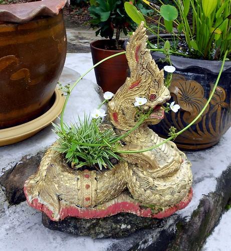 נאגה (דרקון) לועסת צמח. קישוט בודד בכניסה לסאלה