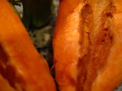 mutant carrot