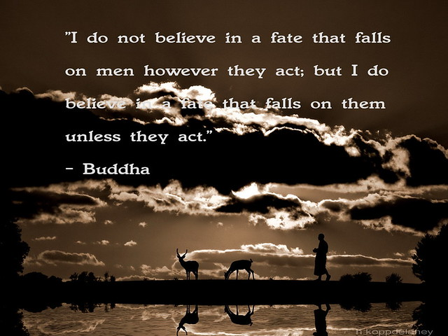 Do Not Believe Buddha Quote